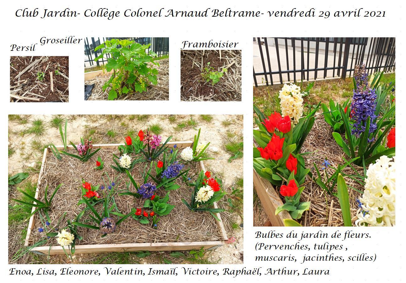 carte postale club jardin